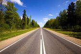 Asphalted road (spring) — Stock Photo