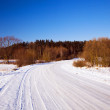 The winter road — Foto Stock