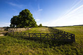 Old a fence — Stock Photo