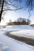 Fortress of Grodno — Stock Photo