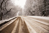 The winter road — Stock Photo