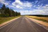 Asphalted road — Stock Photo
