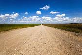 Strada non asfaltata rurale — Foto Stock