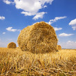 Stock Photo: Straw stack