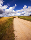 Two rural roads — Stock Photo