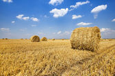 Straw stack — Stock Photo