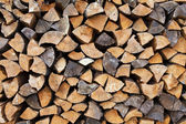 Chipped logs — Stock Photo
