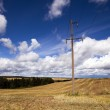 Column in the field — Stock Photo