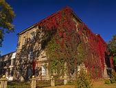 Antik bina — Stok fotoğraf