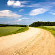 Rural road (summer) — Stock Photo #9382380