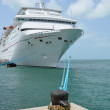 Key West Cruise Ship — Stock Photo