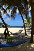 Bahamian Beach Scenic — Stock Photo