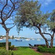 Miami Beach Park Views — Stockfoto