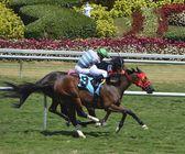Number Nine the Winner — Stock Photo