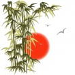 Bamboo on sunset background — Stock Vector