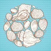 Seashell round design element — Stock Vector
