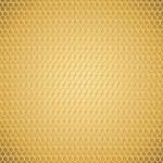 Golden honeycomb texture — Stock Vector #23995123