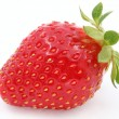 Strawberry berry. — Stock Photo