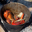 Stock Photo: Lobster cooking