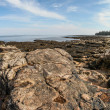 Maine coastline near Bass Harbor — Stock Photo
