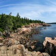 Acadian rocky coast in Maine — Stock Photo #32809279