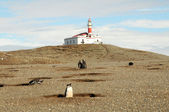 Light house on the Magdalena island — Stock Photo