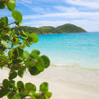 St.thomas beach — Stock Photo #26370627