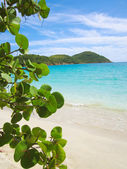 St.thomas beach — Stock Photo