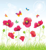 The Red Poppies and Butterflies — Stock Vector