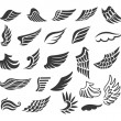 Wings. Set of vector design elements. — Stockvektor