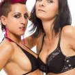 Sexy passionate lesbian couple on white isolated background — Stock Photo #18170351