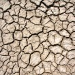 Dry Cracked Earth — Stockfoto