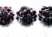 Frozen berries,blackcurrant — Foto Stock