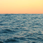 Sea background, sea at sunset — Stock Photo