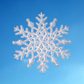 Winter background,snowflake on real blue sky background — Stockfoto