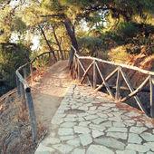 Road on Lycavitos, Greece — Stock Photo