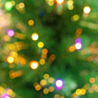 Christmas tree bokeh background — Stock Photo