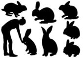 Set of different rabbits — Stock Vector
