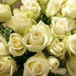 Bunch of greenish white roses, background — Stock Photo