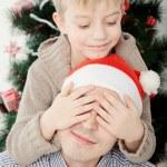 Christmas — Stock Photo #16494181