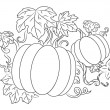 Pumpkins harvest — Stock Vector