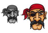 Old corsair captain — Stock Vector