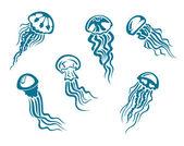 Danger jellyfishes — Stock Vector