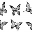 Beautiful butterflies insects - Stock Vector