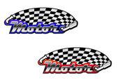 Racing symbol, such a logo. — Stock Vector