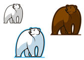 Polar and brown bear — Stock Vector