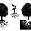 Isolated tree with roots - Imagens vectoriais em stock