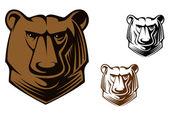 Kodiak bear mascot — Stock Vector