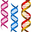 DNA elements - Stock Vector