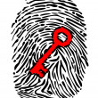 Fingerprint and key — Stock Vector #22479725